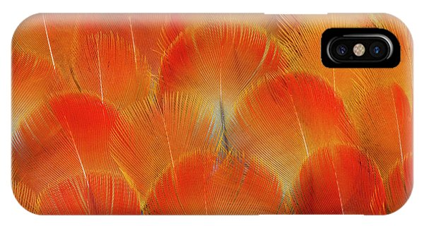 Macaw iPhone Case - Breast Feathers Of The Camelot Macaw by Darrell Gulin