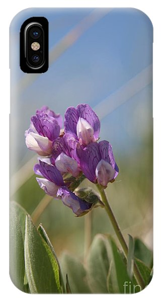 Breathe In The Air No.2 IPhone Case