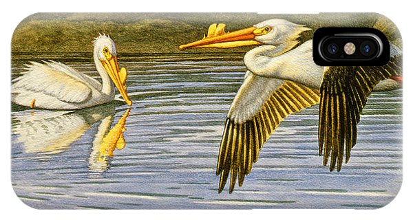 Teton iPhone Case - Breeding Season- White Pelicans by Paul Krapf