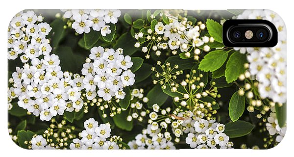 Bridal iPhone Case - Bridal Wreath Flowers by Elena Elisseeva