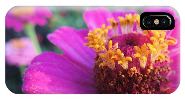 Bridgets Bloom IPhone Case