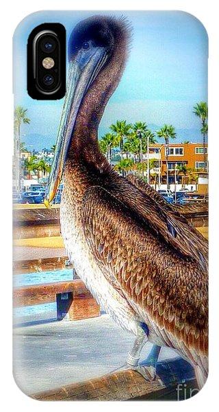 Brief Pelican Encounter  IPhone Case