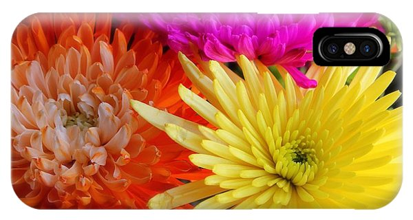 Bright Chrysanthemums IPhone Case