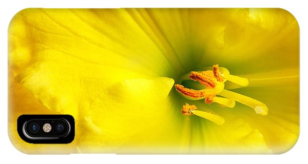 Bright Yellow Lily IPhone Case