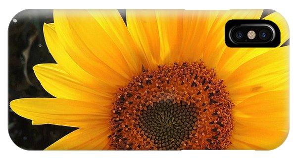 iPhone Case - Brighter Tomorrow  by Stephanie Callsen