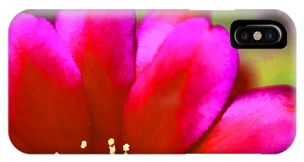 iPhone Case - Brilliant Bloom by Nancy Marie Ricketts