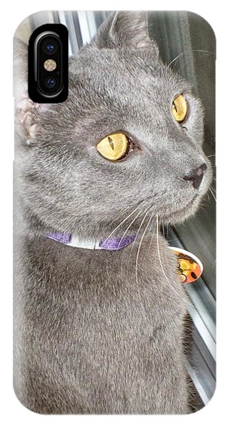 Brique Watching The Snow Fall IPhone Case