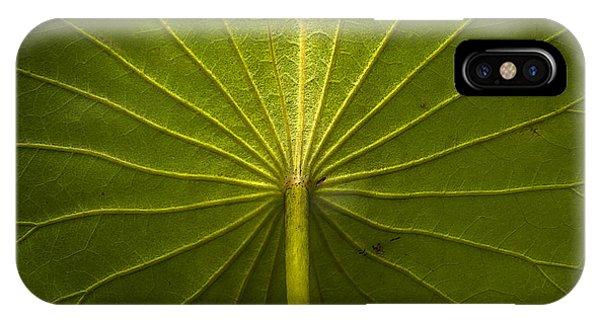 Broad Leaf IPhone Case