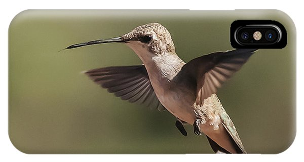 Broad-tailed Hummingbird 1 IPhone Case