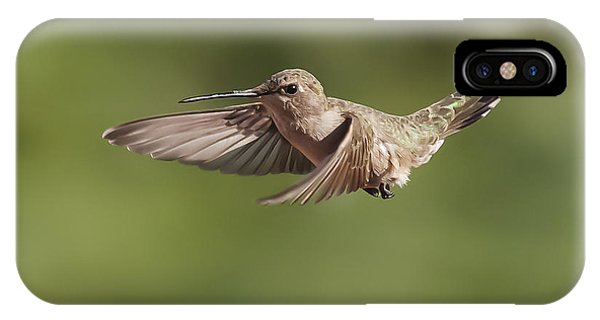 Broad-tailed Hummingbird 3 IPhone Case