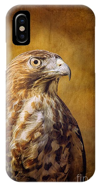Broad Wing Hawk Phone Case by Todd Bielby