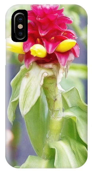 IPhone Case featuring the digital art Bromeliad by Photographic Art by Russel Ray Photos