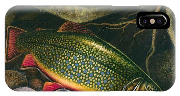 Trout iPhone Case - Brook Trout Lair by JQ Licensing