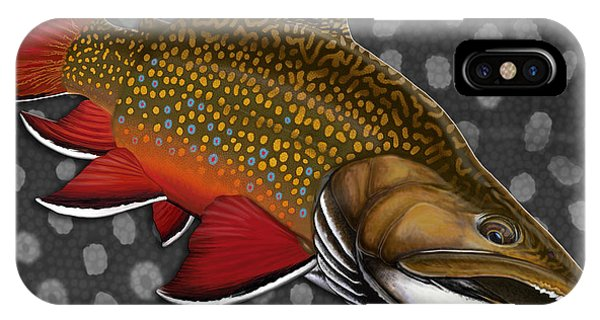 Trout iPhone Case - Brook Trout  by Nick Laferriere