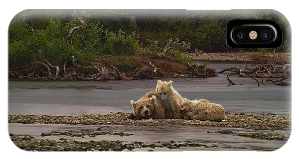 Brown Bear And Cubs Taking A Break From Fishing For Salmon Phone Case by Dan Friend