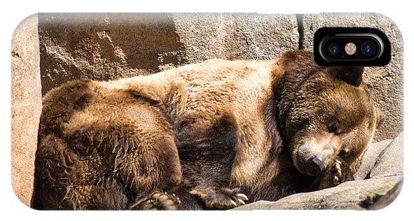 Brown Bear Asleep Again IPhone Case