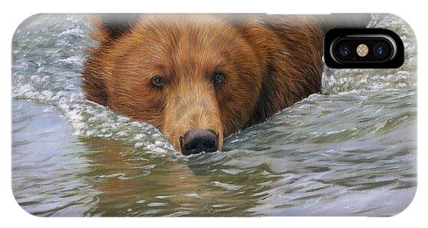Brown Bear iPhone Case - Brown Bear by David Stribbling