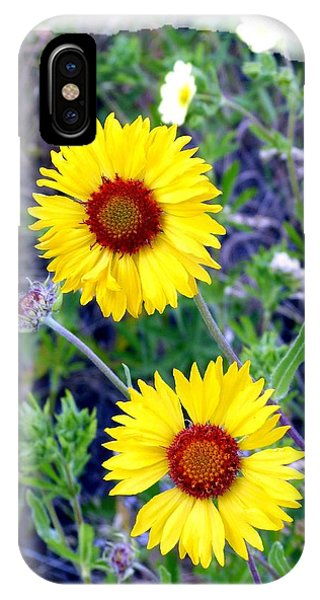 Brown- Eyed Susans IPhone Case