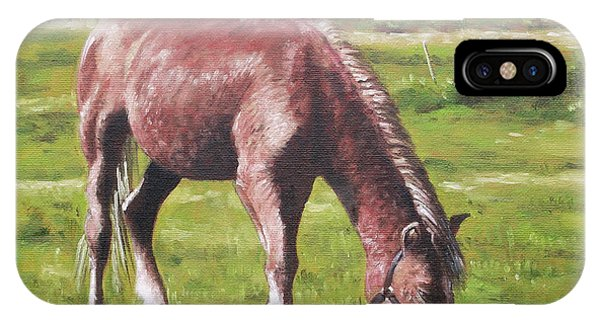 Brown Horse By Stables IPhone Case