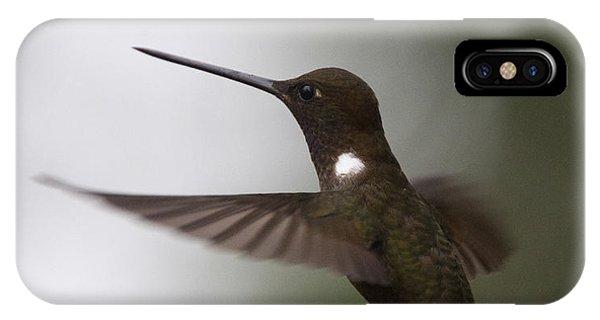 Brown Inca Hummingbird IPhone Case