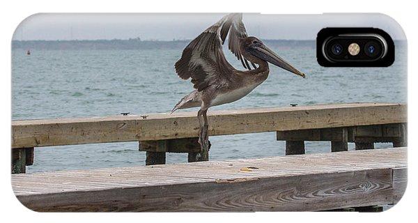 Brown Pelican 1 IPhone Case
