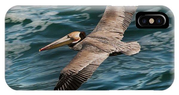 Brown Pelican Flying 1 IPhone Case