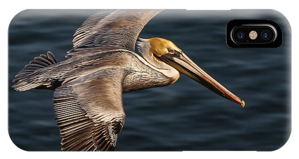 Brown Pelican Flying IPhone Case