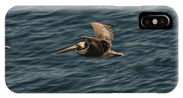 Brown Pelican Flying Panorama IPhone Case