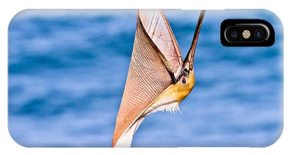 Brown Pelican - Head Throw IPhone Case