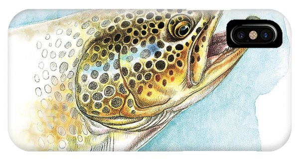 Trout iPhone Case - Brown Trout Study by JQ Licensing