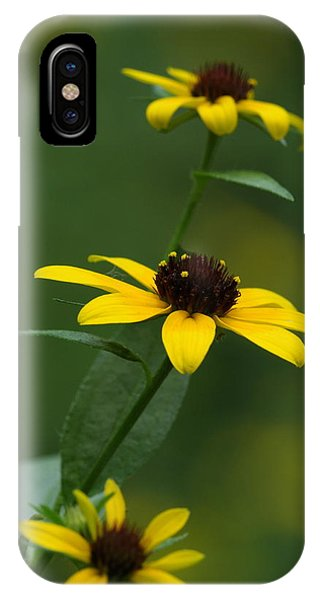 Browneyed Susan IPhone Case