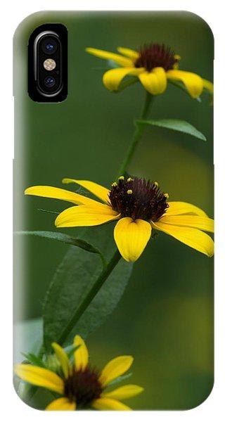 Browneyed Susan IPhone Case