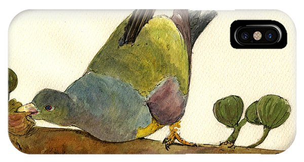 Pigeon iPhone Case - Bruce S Green Pigeon by Juan  Bosco
