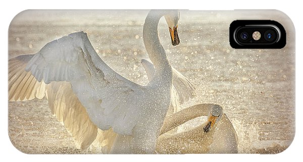 Swan iPhone Case - Brutal Swan Fight by Libby Zhang