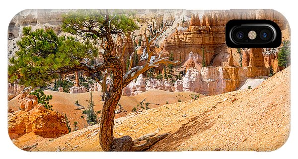 Bryce Canyon Np IPhone Case