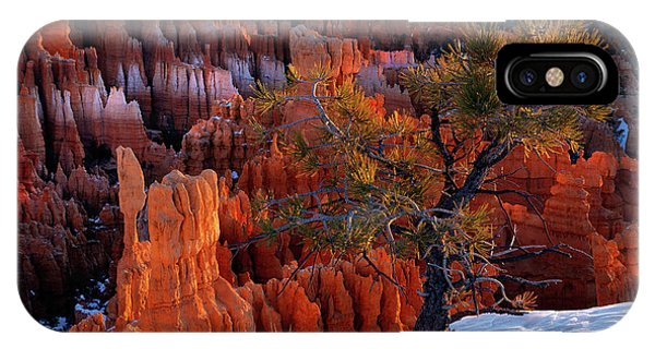Bryce Canyon Winter Light IPhone Case