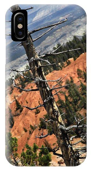 Bryce Tree IPhone Case