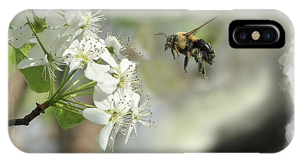 Bubble Bee Looking For Nectar Phone Case by Dan Friend