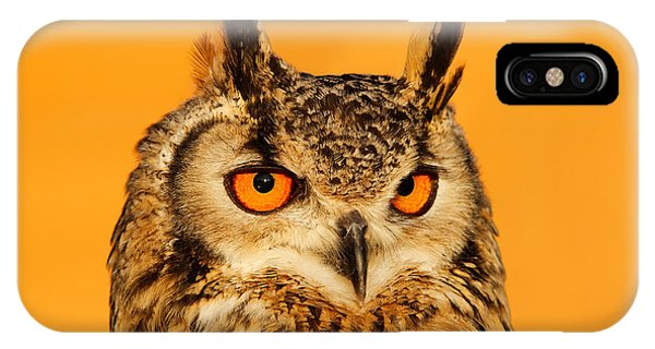 Orange Sunset iPhone Case - Bubo Bubo by Roeselien Raimond
