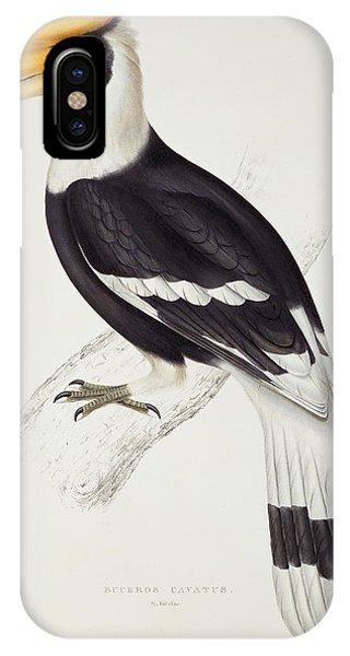 Great Hornbill IPhone Case