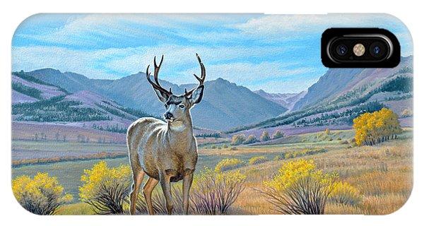 Mule Deer iPhone Case - 'buck Deer-tom Miner Basin' by Paul Krapf