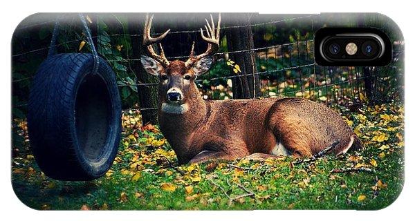Buck In The Back Yard IPhone Case