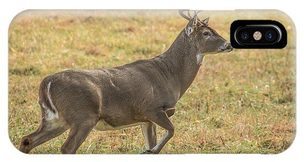 Buck Stallion IPhone Case