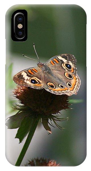 Buckeye IPhone Case