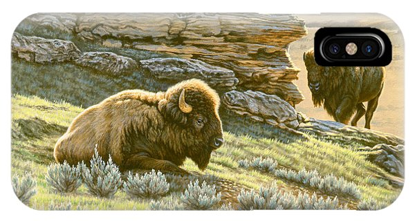 Yellowstone iPhone Case - 'buffalo At Soda Butte' by Paul Krapf