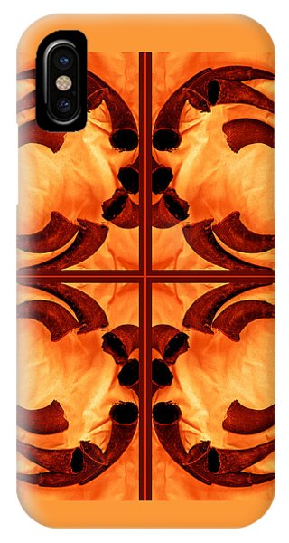 Buffalo Crossroads Of Sun Generations 2010 IPhone Case