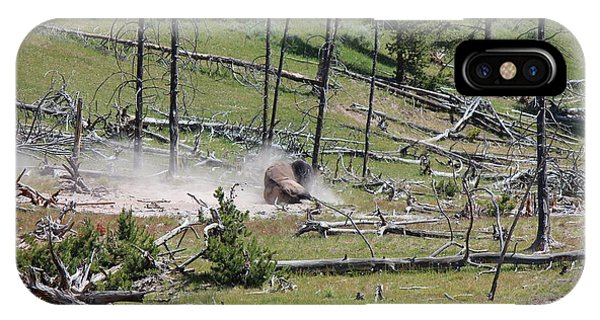 Buffalo Dust Bath IPhone Case