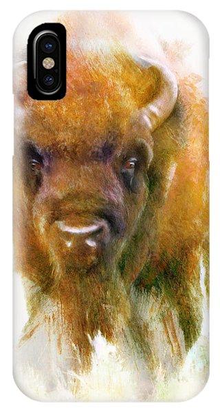 Da176 Buffalo II Daniel Adams IPhone Case