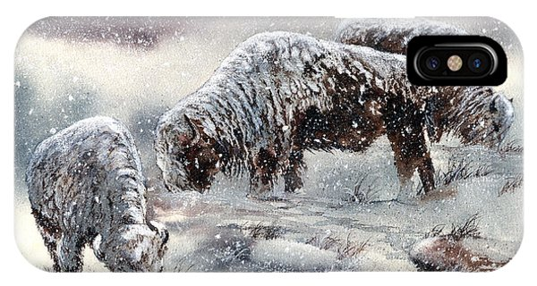 Buffalo In Snow IPhone Case