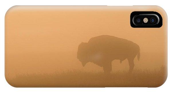 Buffalo Nation IPhone Case